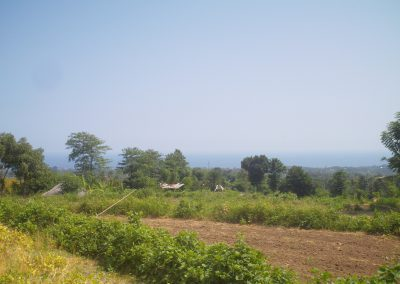 Beautiful land in Lovina hills, 180 degrees view on Lovina bay 198 000euro