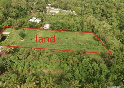 flat land in lovina hills in the middle of stunning nature