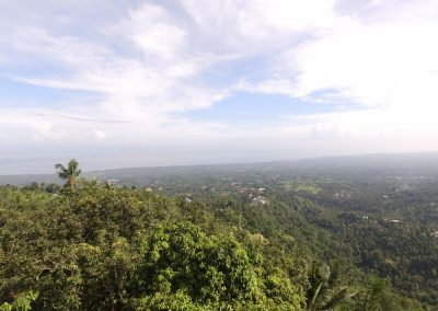 Stunning view of the Lovina valley and jungle for this land (LISTING:LVP0242)