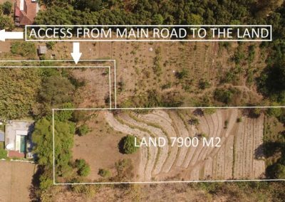 7900 M2 land for sale nearby Lovina 244.698. (Listing ID: 200757)