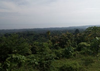 SUPERB SEA VIEW FOR THIS 7775 M2 LAND IN KAYUPUTIH 280.876. – euro (Listing ID: 199973)