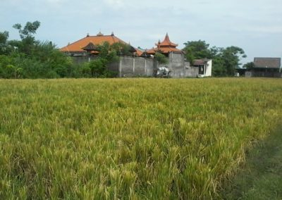 Land For Sale Near Sulanyah Beach 118.748. – Euro (Listing ID: 225009)