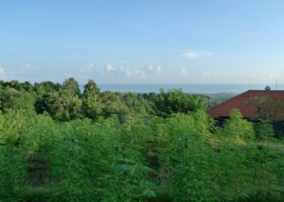 AMAZING PLOT WITH GREAT OCEAN VIEWS 131.022. – euro (Listing ID: 199936)