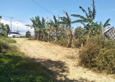Land in great location for sale 116.154. – euro (Listing ID: 205570)