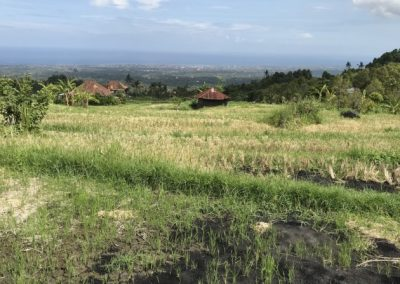 LAND WITH EXQUISITE VIEW Rp. 50,000,000 / 100 M2 (Listing ID: 217071)