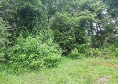Land for sale 46.874. – Euro (Listing ID: 225530)