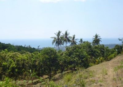land with the Best view in Lovina Hills 343.816. – Euro (Listing ID: 216500)