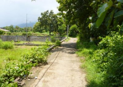 Land for sale in central lovina 40,796 , – Euro (Listing ID: 225010)