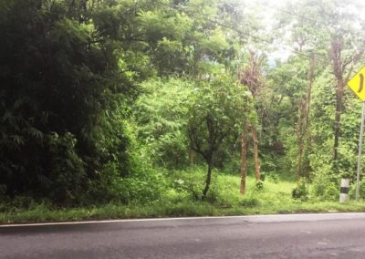 Land For Sale Access Road Bali Province 479,868 , – Euro (Listing ID: 228213)