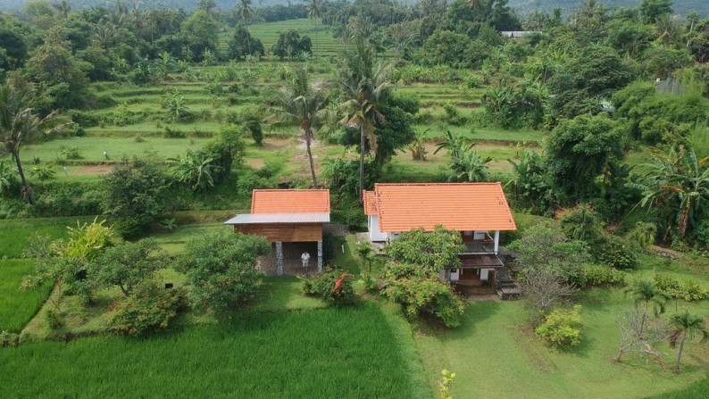 8140 M2 amazing land for sale! 330.000,- Euro (Listing ID: 233752)