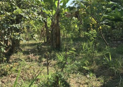 245456-land-for-sale-2-794 (1)