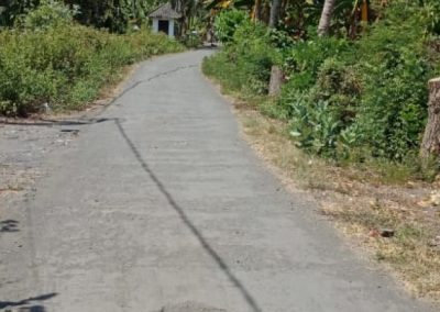 249254-beachland-for-sale-in-the-north-of-bali-14-794