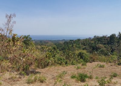 249458-land-with-sea-view-for-sale-10-794