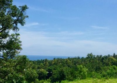 249458-land-with-sea-view-for-sale-4-794