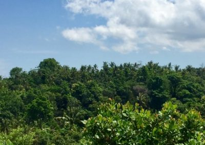 249458-land-with-sea-view-for-sale-5-794