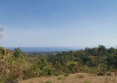 249458-land-with-sea-view-for-sale-7-794