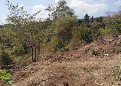 249458-land-with-sea-view-for-sale-8-794