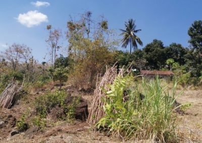 249458-land-with-sea-view-for-sale-9-794