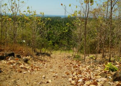 249459-land-with-sea-view-in-lovina-for-sale-10-794