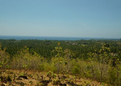 249459-land-with-sea-view-in-lovina-for-sale-3-794