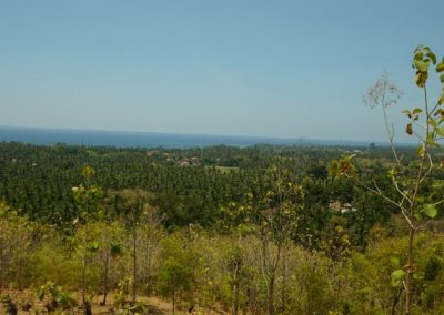249459-land-with-sea-view-in-lovina-for-sale-9-794