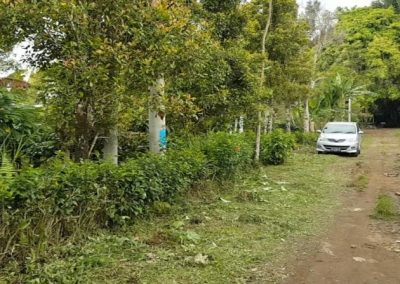 252287-land-for-sale-in-north-bali-4-794