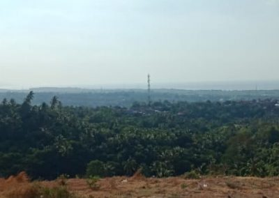 252814-land-for-sale-with-beautiful-sea-view-6-794