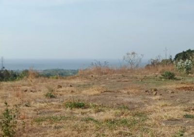 253050-land-for-sale-with-great-sea-view-6-794