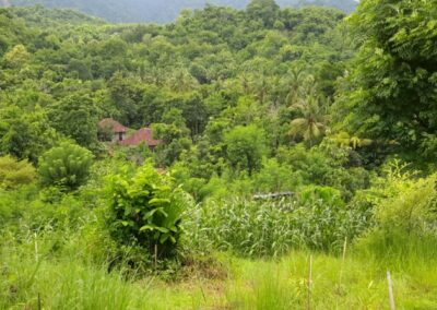 208611-7200-m2-land-located-west-of-the-city-seririt-with-great-ocean-and-mountain-views-9-794