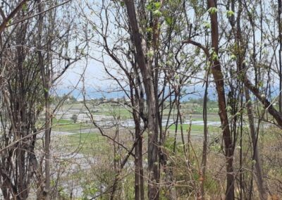210026-land-for-sale-1000-m2-with-good-ocean-view-in-seririt-7-794