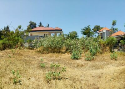 213301-small-plot-of-land-for-sale-in-singaraja-2-794