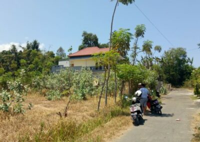 213301-small-plot-of-land-for-sale-in-singaraja-3-794