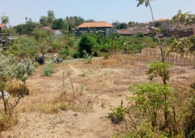 213301-small-plot-of-land-for-sale-in-singaraja-5-794