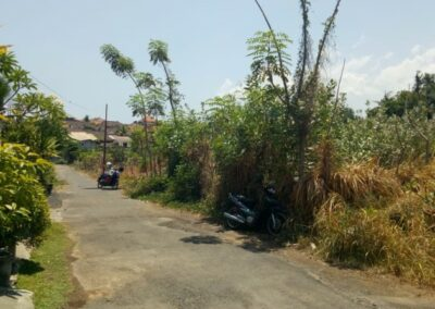 213301-small-plot-of-land-for-sale-in-singaraja-7-794