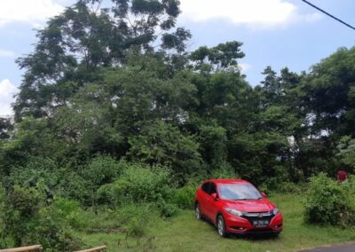 225530-land-for-sale-6-794