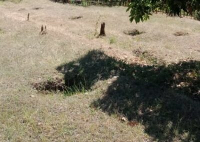246892-land-for-sale-in-lovina-with-nice-view-6-794