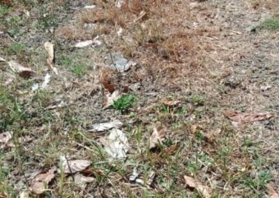 246895-land-for-sale-in-lovina-with-nice-view-8-794