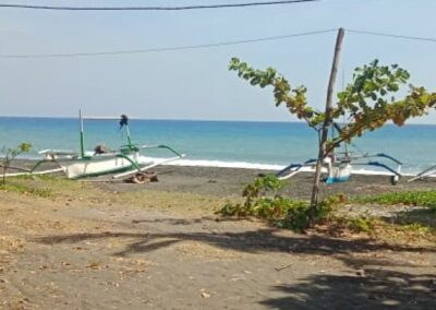 249254-beachland-for-sale-in-the-north-of-bali-2-794