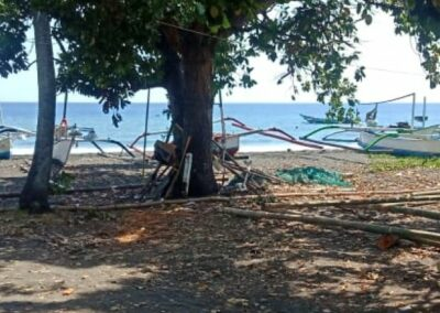 249254-beachland-for-sale-in-the-north-of-bali-3-794