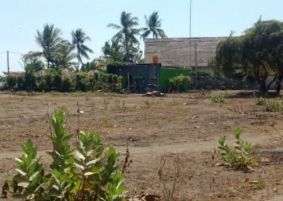 249254-beachland-for-sale-in-the-north-of-bali-5-794