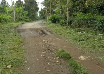 252287-land-for-sale-in-north-bali-3-794