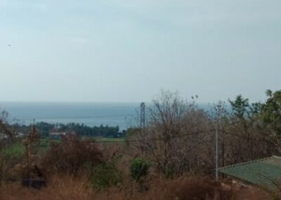 252803-amazing-sea-view-land-for-sale-4-794
