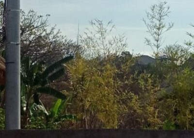 252803-amazing-sea-view-land-for-sale-5-794
