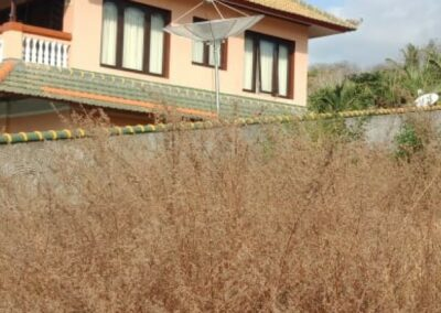 252803-amazing-sea-view-land-for-sale-9-794