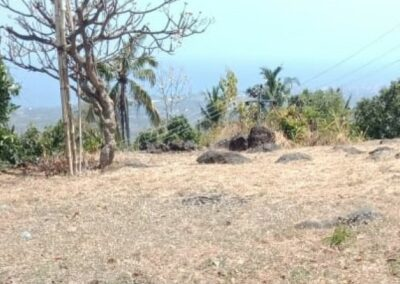 254313-sea-view-land-for-sale-in-lovina-7-794