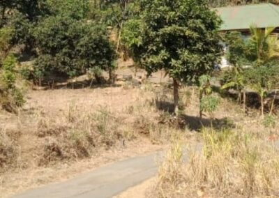 255086-land-for-sale-only-2km-from-central-lovina-1-794