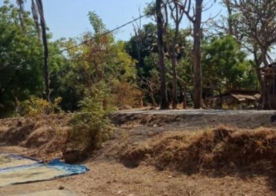 255086-land-for-sale-only-2km-from-central-lovina-3-794