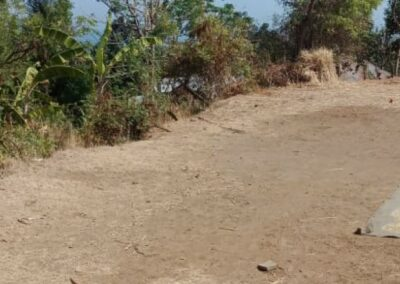 255086-land-for-sale-only-2km-from-central-lovina-7-794