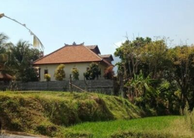 255371-land-for-sale-with-rice-field-view-5-794