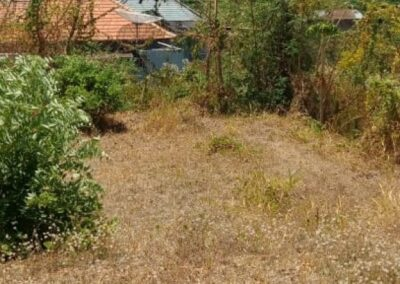 258386-land-for-sale-in-north-bali-1-794